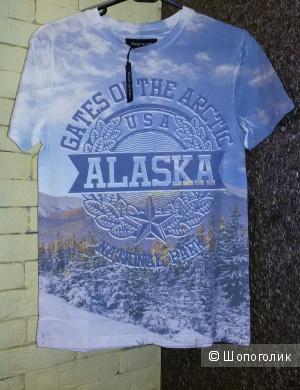 Мужская футболка Alaska