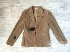 Благородный велюровый пиджак Massimo Dutti