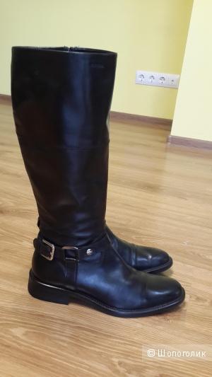 Красивые кожаные сапоги в жоккейском стиле в отличном состоянии, на ногу 24,5-25 см Geox черного цвета