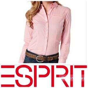 ESPRIT: хлопковая рубашка в размере 40 евро