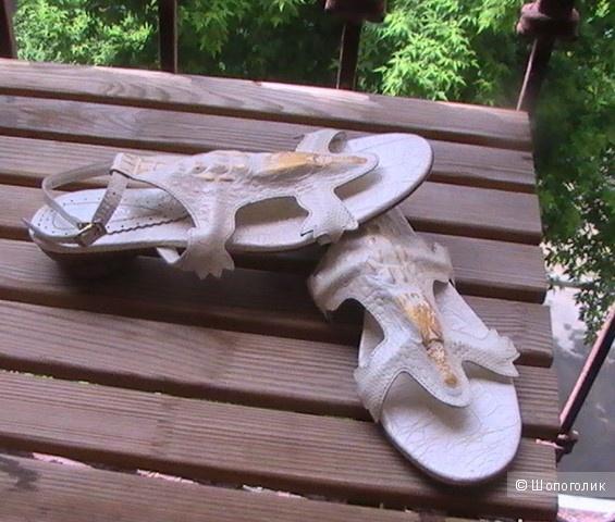 Босоножки-саламандры  Glossi 39-40