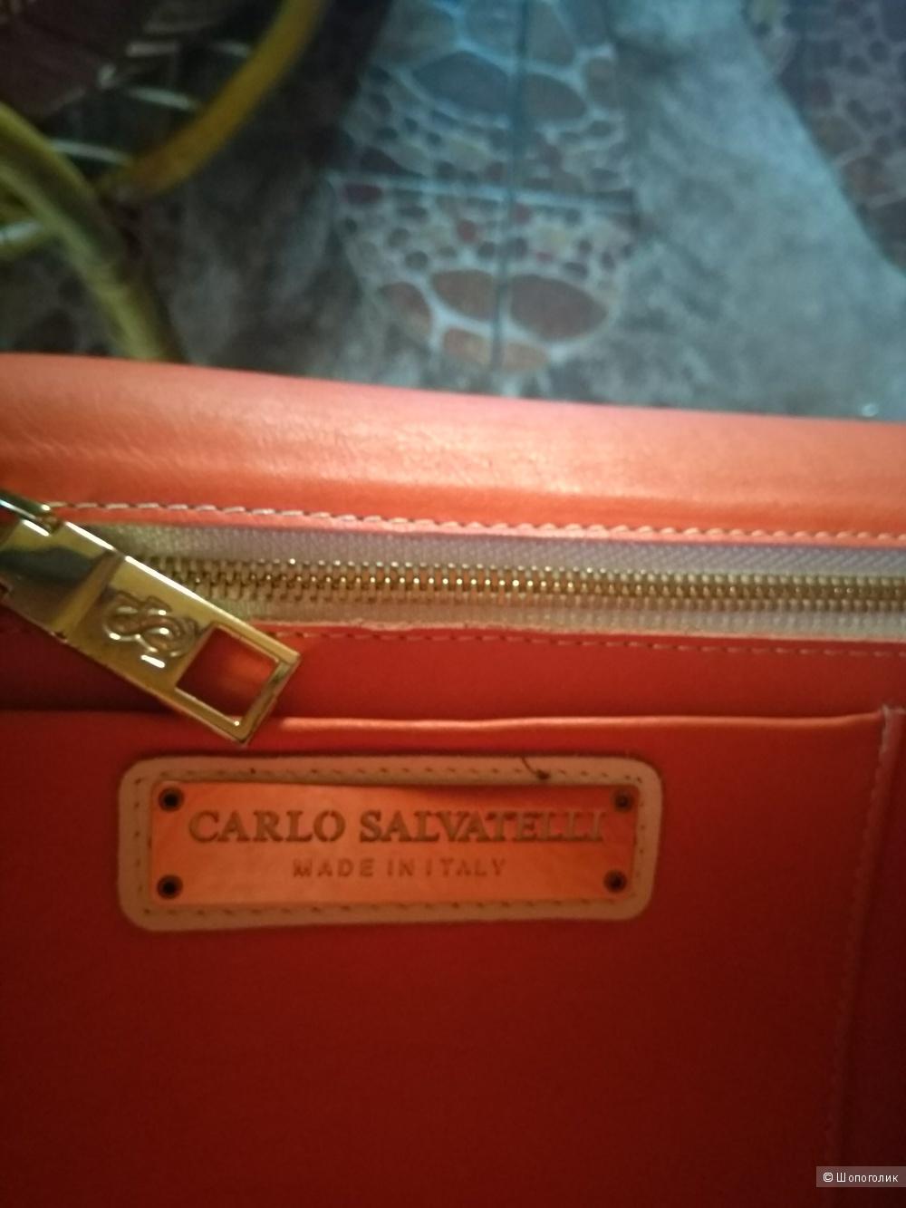 """Сумка """"Carlo Salvatelli"""" 26*16см"""