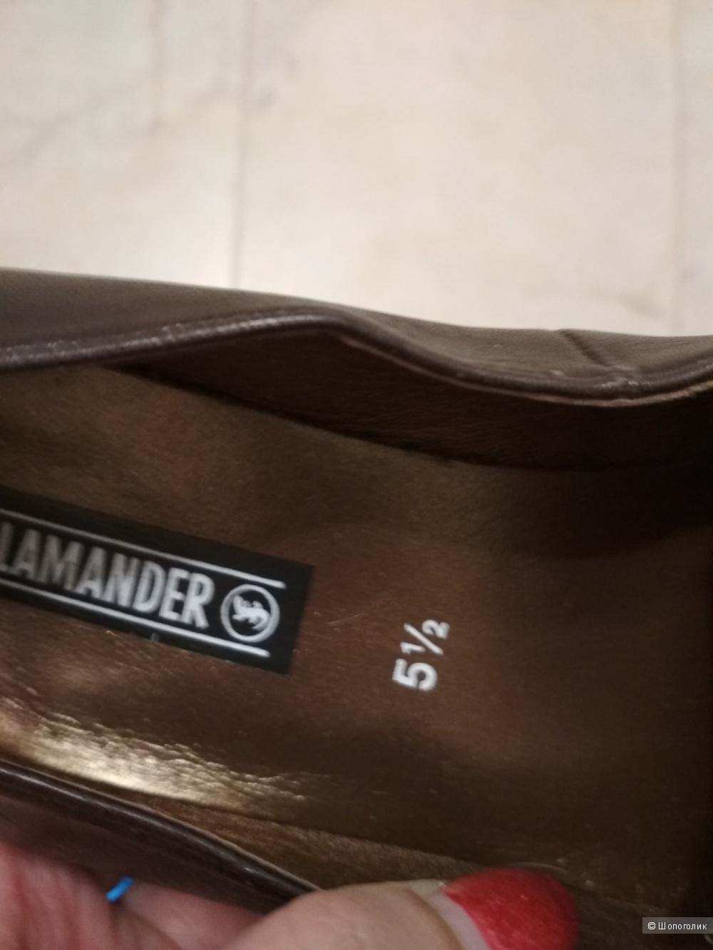 Туфли Salamander, р. 37,5- 38.