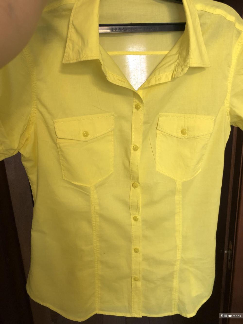 Рубашка, terranova, L