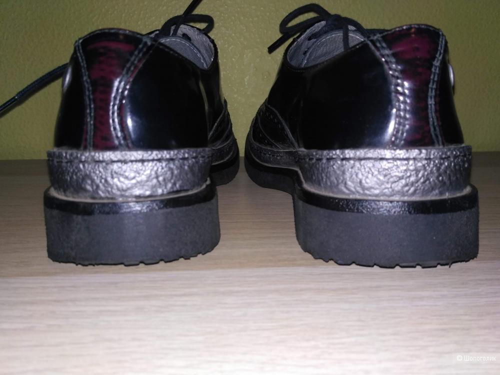 Ботинки броги DB BY D'BUZZ, размер 38