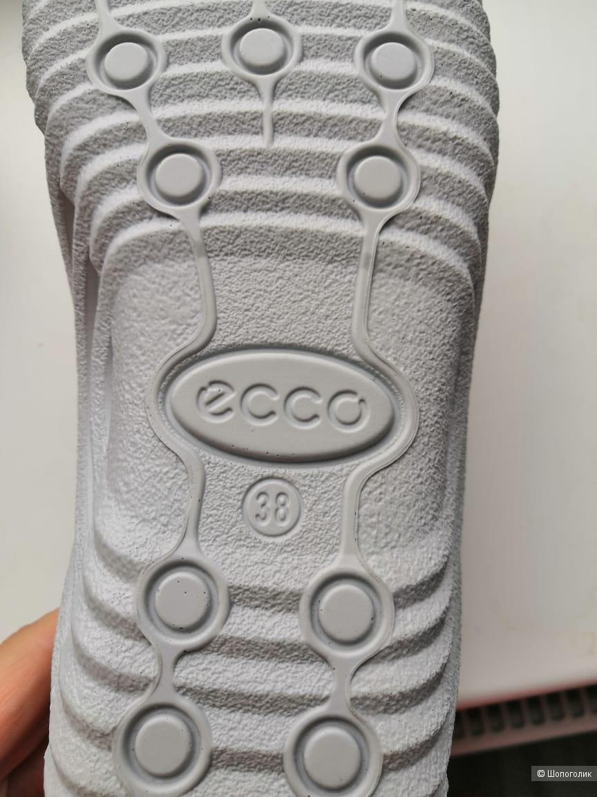 Кроссовки Ecco размер 38 (7-7.5 us)