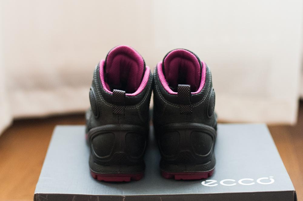Ботинки Ecco Biom Terrain GTX р.36