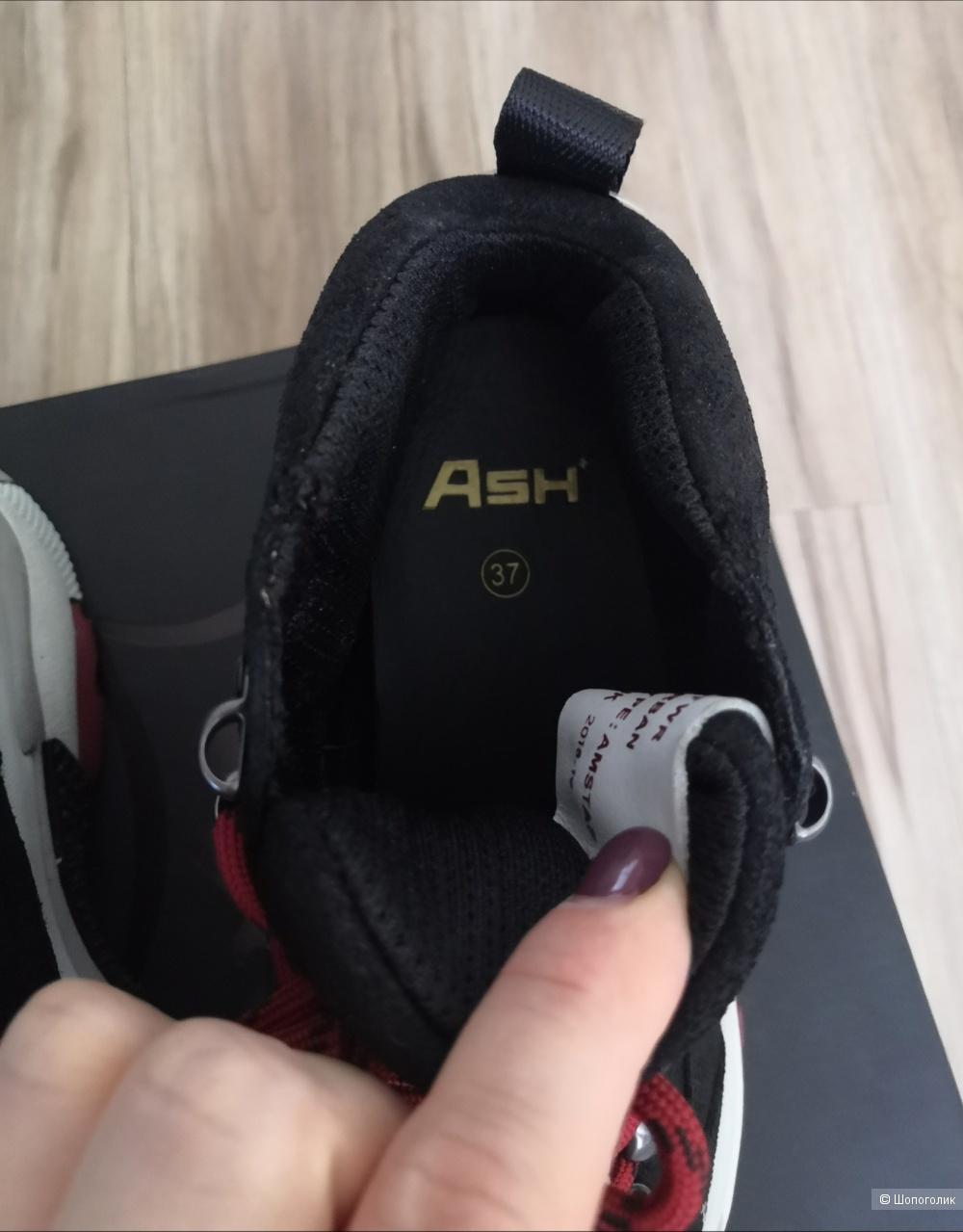 Кроссовки ASH, размер 37.
