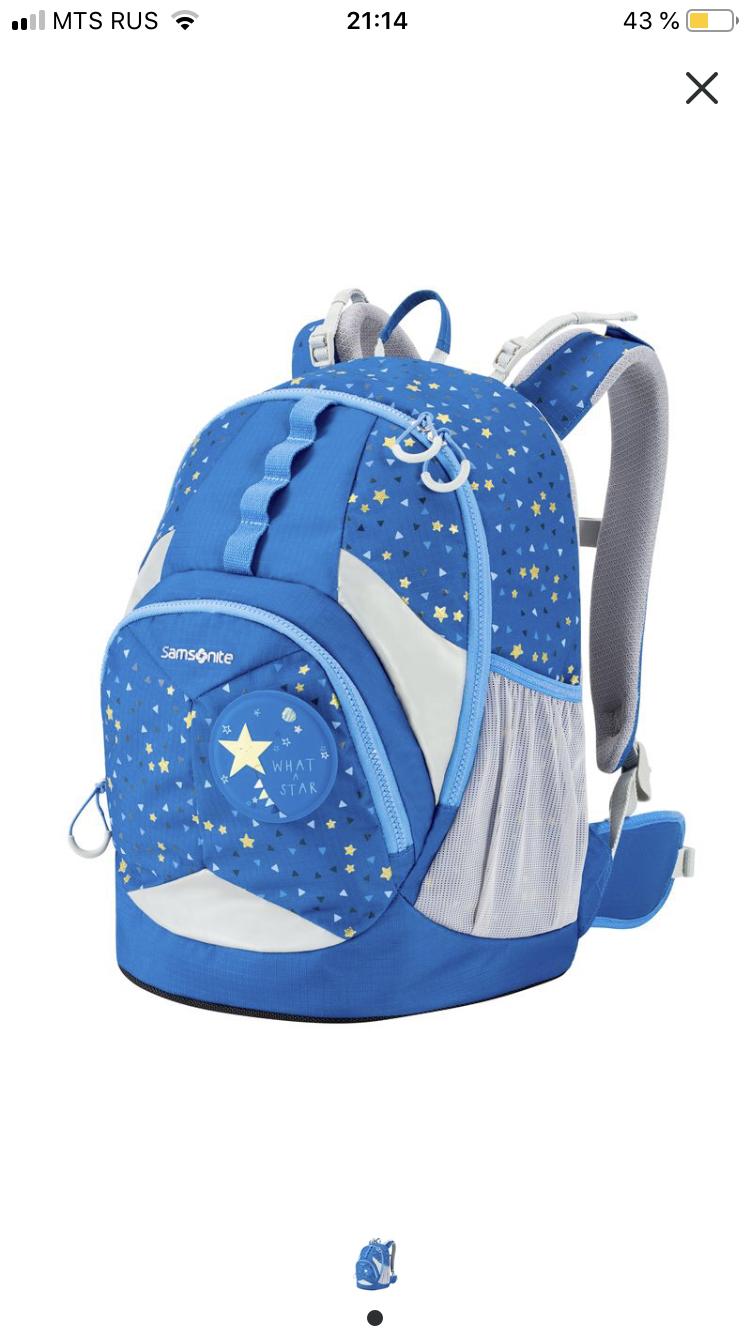 Школьный рюкзак Samsonite