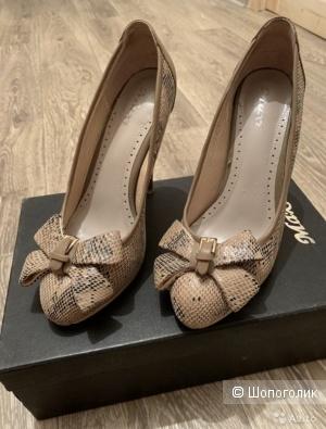 Туфли, бренд - MAXI