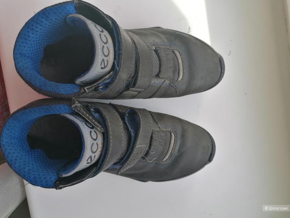 Кожаные ботинки ECCO biom Goretex 38 размера