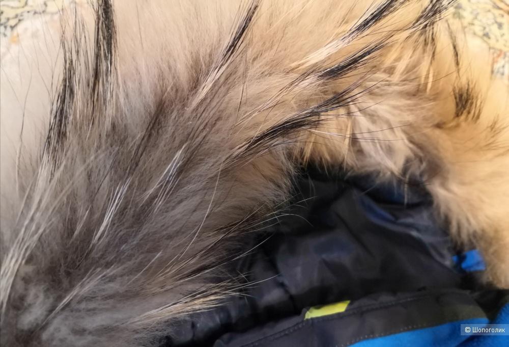 Костюм зимний Стелла кидс, Фокс куб , 140 см