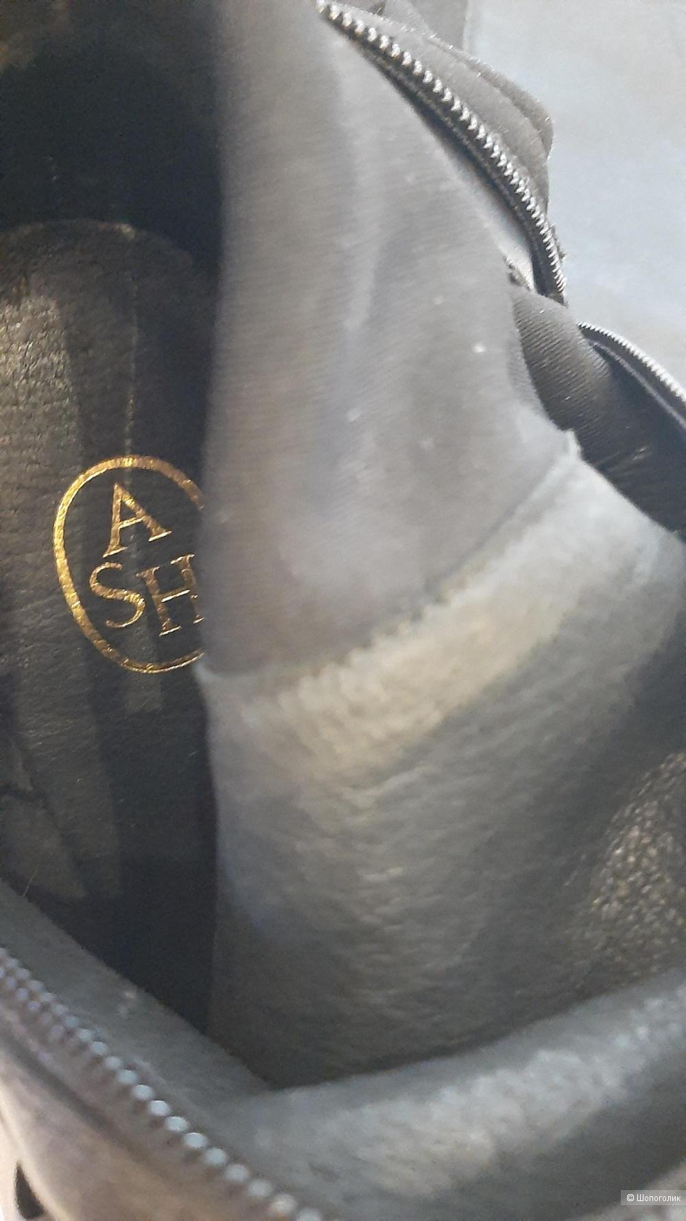 Ботфорты  Ash 37 размер
