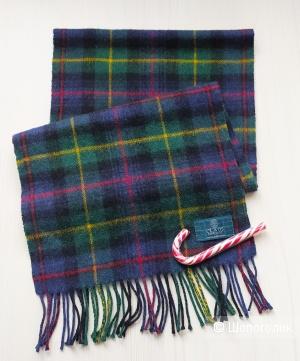 Шарф мужской. Clans Scotland. Размер 140×30.