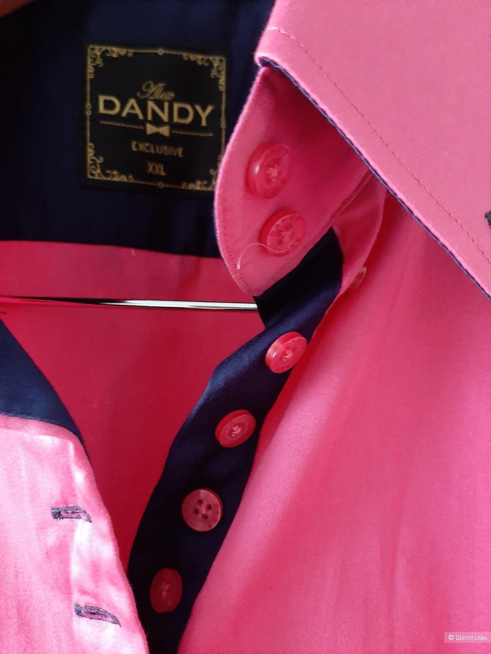 Рубашка Alex Dandy р.46