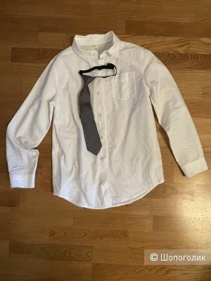 Рубашка Crasy, 10-12 лет