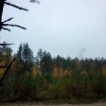 Oxana _K