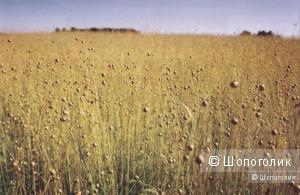Лён – его свойства, виды, особенности ухода за льняными изделиями