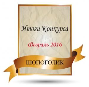 Итоги конкурса февраля 2016 года